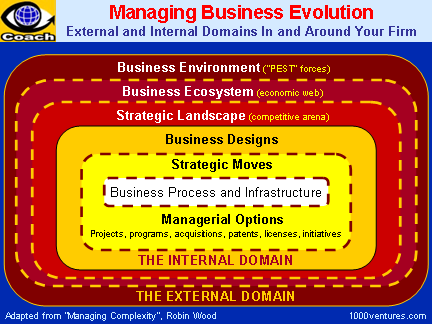 Business Evolution, Business Ecosystem, Business Environment, Business Design, Strategic Management