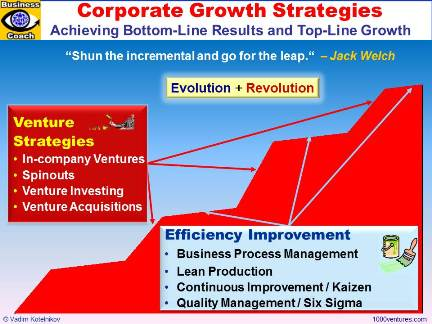 Corporate Growth Strategies: Venture Strategies and Efficiency Improvement Strategies - Top-Line Growth and Bottom-Line Growth