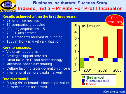 Formation of a Business Incubator