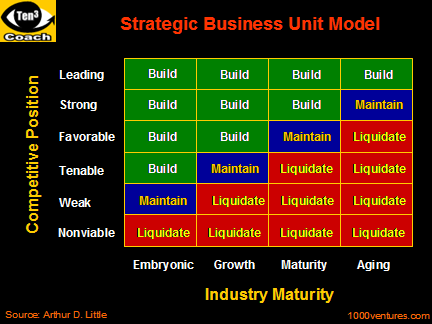 strategic business unit sbu a major product line within a company