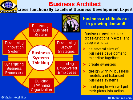 BUSINESS ARCHITECT - Cross-functionally Excellent Business Development Expert