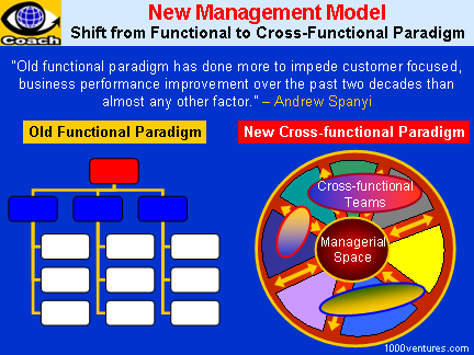 NEW MANAGEMENT MODEL: Shift from Functional To Cross-Functional Paradigm, Empowering Cross-Functional Teams