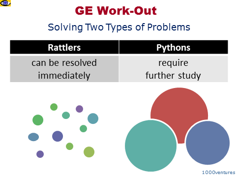 GE Work-Out - Rattlers Pythons - two types of problems solved