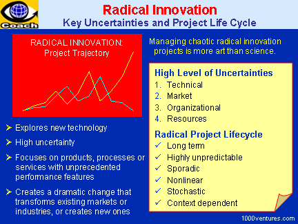 Radical Innovation and Radical Project Management