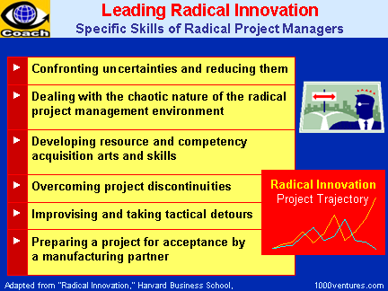 Leading Radical Innovation Projects, Radical Project Management, Specific Skills of Radical Project Managers