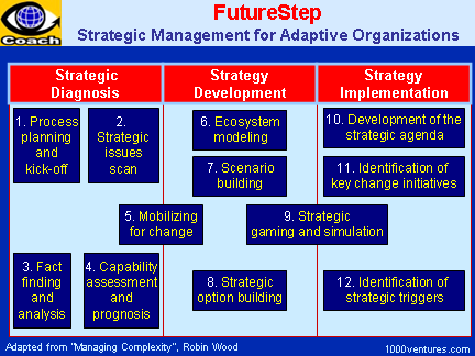 FutureStep - Strategic Management Process for Adaptive Organizations - How To Manage Complexity