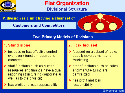 FLAT ORGANIZATION: Divisional Structure