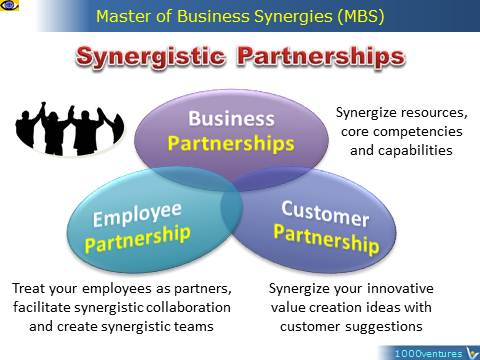 Synergistics Partnerships: Business, Customer, Employee, Master of Business Synergies, MBS, Vadim Kotelnikov