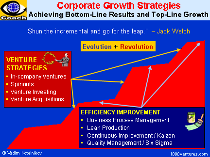 Corporate Growth Strategies: Venture Strategies (Radical Innovation) and Continuous Improvement Strategies (Incremental Innovation)
