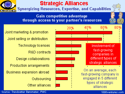 the features of strategic alliances The effects of characteristics of partners on strategic alliance performance in the sme dominated travel sector.