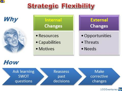 Strategic Flexibility