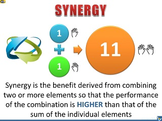 Synergy definition Synergy example