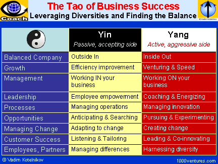 The TAO of BUSINESS SUCCESS - Leveraging Diversities and Finding the Balance
