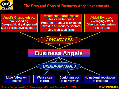 Advantages and Disadvantages of Business Angels (free Business e-Coach