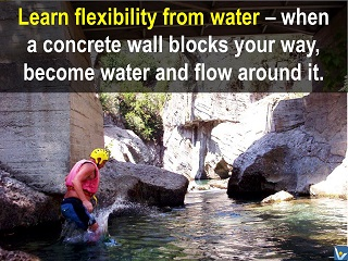 Smart Success quotes Learn flexibility from water flow around obstacles Vadim Kotelnikov